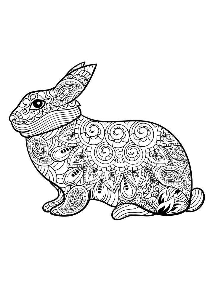rabbit from animals an adult coloring book