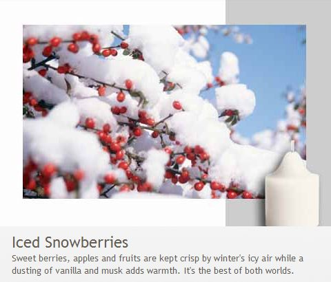 Iced Snowberries: It's the best of both worlds - sweet berries, apples and fruits are kept crisp by winter's icy air while a dusting of vanilla and musk adds warmth.