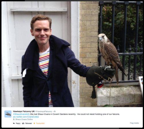 shaun evans & a falcon.