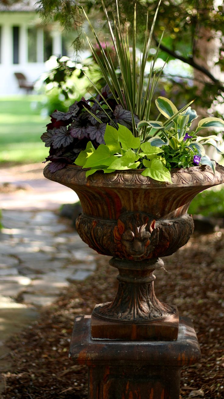 A Container Garden With Color and Texture for the Shade