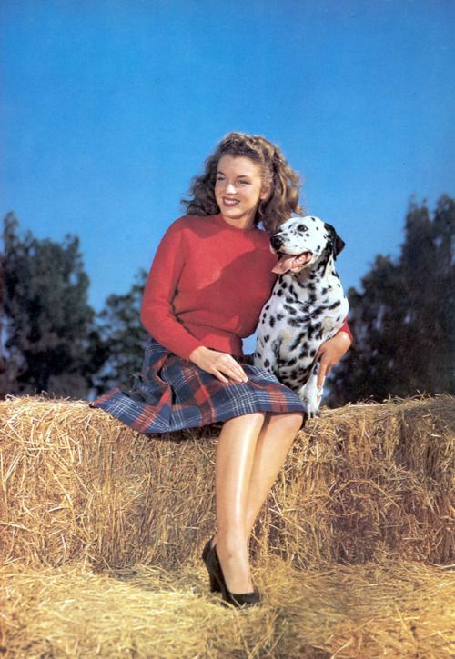 Norma Jean: Jeans Baker, Normajean, Queen, Young Marilyn Monroe, Marilyn Monroe Photo, Norma Jeans, Photo Galleries, Dalmatians Dogs, Fall Photo