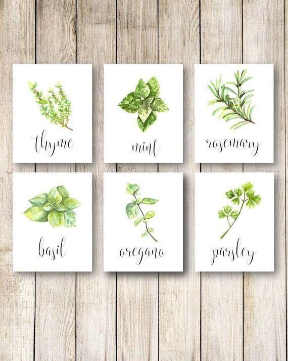 Herb Kitchen Decor Herbs Kitchen Wall Art Kitchen Herbs Decor