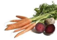 Kaninchen-Ernährung, Frischfutterliste mit Nährwerten, Gemüseliste