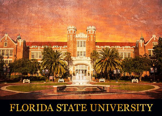 Florida state university application essay