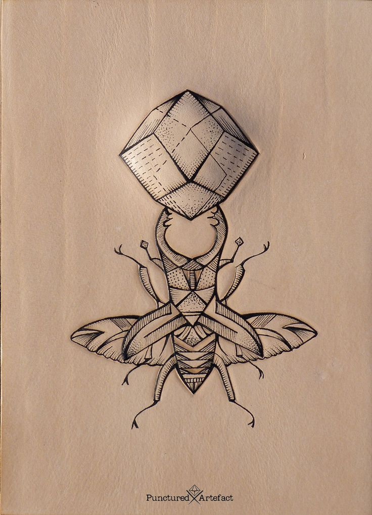 This is a graphic of Amazing Sacred Geometry Beetle Tattoo Drawing