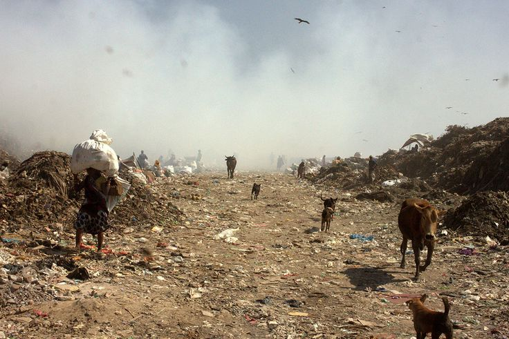 Delhi's dilemma: What to do with its tonnes of waste? - Al Jazeera English