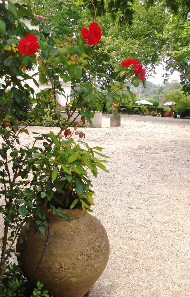 Quinta da ALCAIDARIA MOR em Ourém