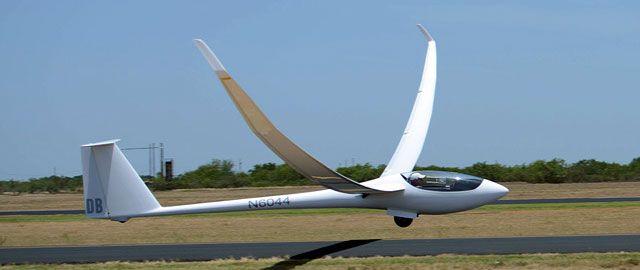 Concordia sailplane