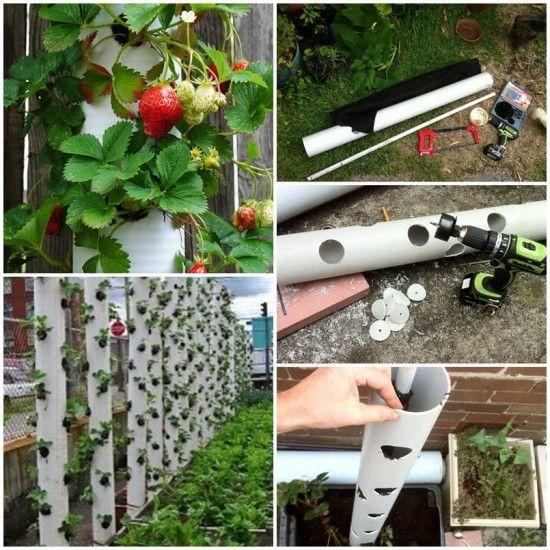 FabArtDIY PVC Gardening Ideas and Projects - PVC Strawberry Tube Planter #DIY, #gardening