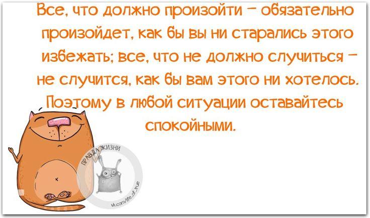 Mi6v3p1A890.jpg (915×540)
