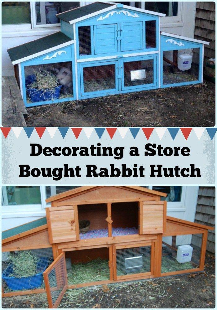 14 besten Hasen - ABC Bilder auf Pinterest | Kaninchen ...
