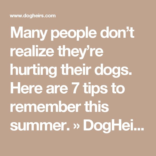Many people don't realize they're hurting their dogs. Here are 7 tips to remember this summer. » DogHeirs | Where Dogs Are Family « Keywords: sun protection, paws, summer heat