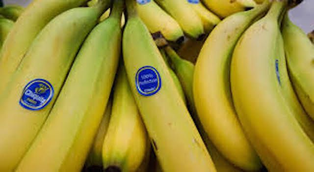 Regional countries urged to cooperate in the fight against TR4 banana disease