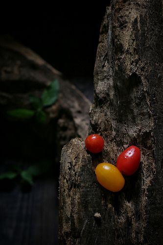 Cherry Tomatoes | by henny_mh