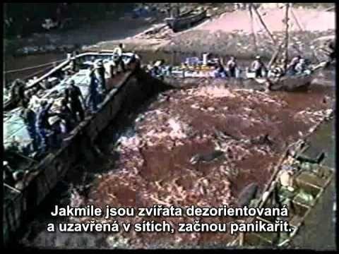 Pozemšťané - film - české titulky - obnovená premiéra - pozor - drastick...