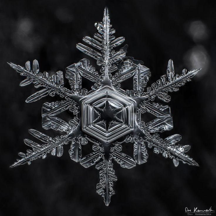 Gallery of 100s of the best Snowflake