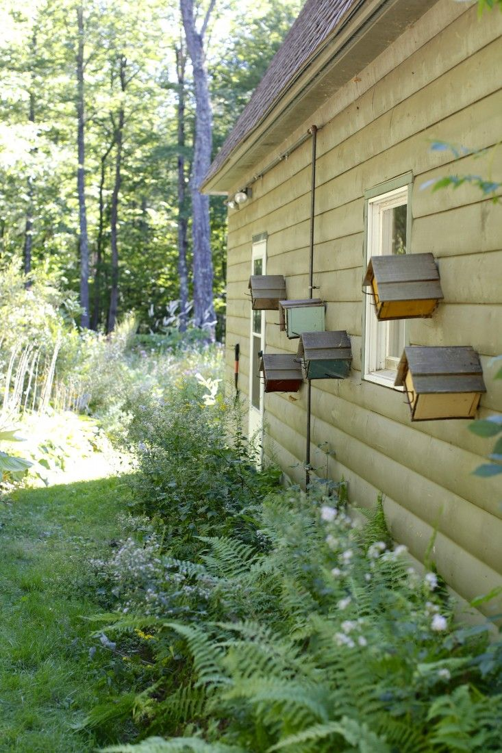 colored birdhouses are mounted on the exterior of the main house creating visual interest as visitors walk from the driveway to the backyard gardens