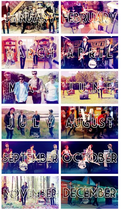 THe Vamps through 2013