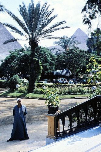 Mena House, view from hotel main entrance to pyramids  Book your hotel now with Santa Claus Travel Egypt, just contact us now: reservation@santaclaustravel.com