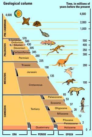 Geological Timeline 7th Grade Science Pinterest