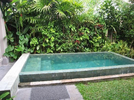Easy small pool landscape outdoor ideas pinterest for Simple pool landscaping ideas
