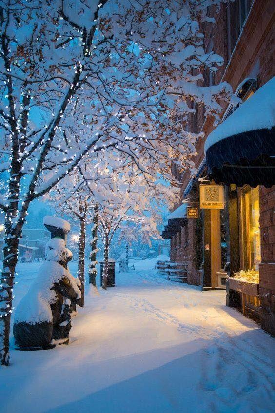 Quiet snowy evening @unknown city