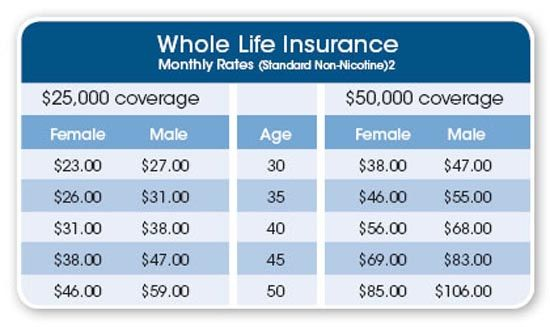 Whole Life Insurance Rates