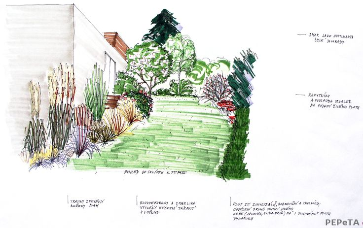 skici zahradního designu #gardendesign skizza #copic markers used