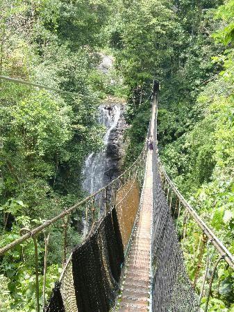 Los Campesinos Reserve - Quepos (waterfalls, jungle, hanging bridges)