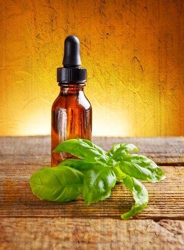 Riequilibrante del sistema nervoso come l'olio essenziale di basilico