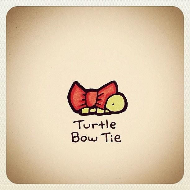 Turtle Bow Tie Photograph by Turtle Wayne