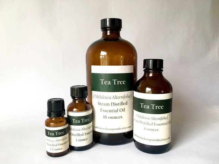One of the favourites in my shop : Tea Tree Essential Oil, Melaleuca Alternifolia, Australian Tea Tree, bul...  https://www.etsy.com/listing/462636915/tea-tree-essential-oil-melaleuca?utm_campaign=crowdfire&utm_content=crowdfire&utm_medium=social&utm_source=pinterest