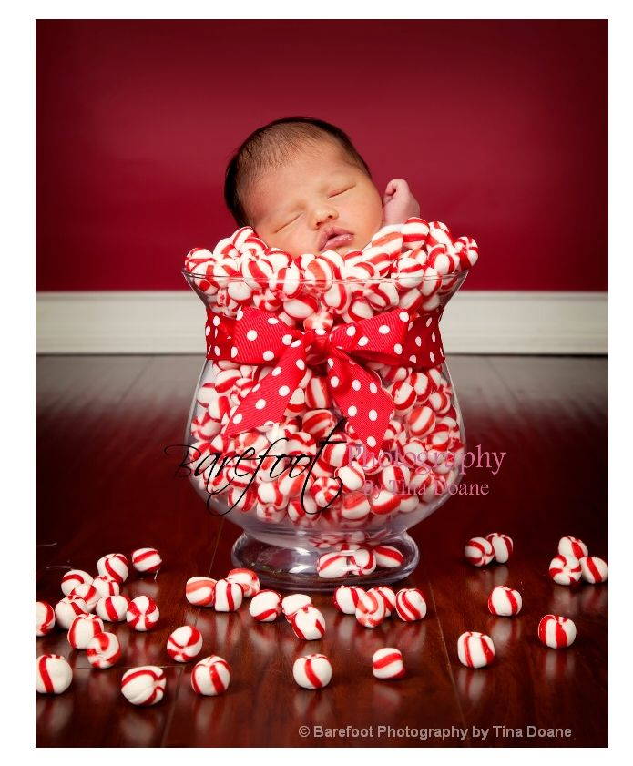 Newborn photography christmas candy these are totally sees peppermint twists