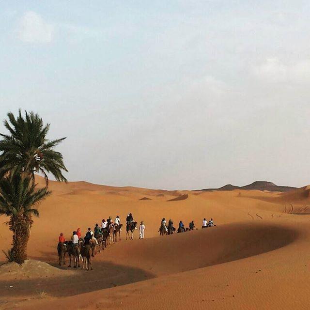 Wait for us!   www.morocco-objectif.com https://www.youtube.com/watch?v=L5YLOQeiIeM #moroccoobjectif #sahara #saharadesert #merzouga #merzougadunes #ergchigaga #ergchebbi #cameltrek #trek #berber #nomad #morocco #maroc #marruecos #marocco #marroc #marrocos #marokko #maroko   Morocco Desert Tours  Morocco Desert Trips