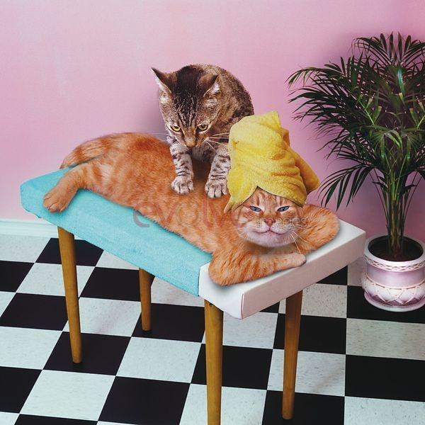 chatt massage hårt kön i Lund