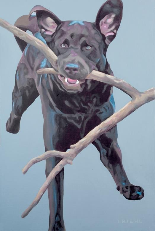 """The Art of Lisa Riehl      This Saturday Oct 5th is the GVAC Wags to Whiskers dinner & silent auction fundraiser. Here is what I'm donating to the silent auction: """"Merlin"""" 18x28"""" limited edition giclee.  For more information, see: http://www.animalcrusaders.ca/news/wags-to-whiskers-dinner-auction-2013-october-5th/"""