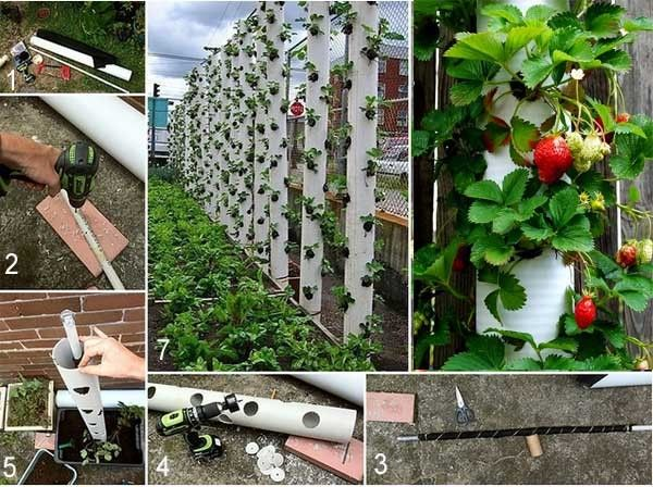 садоводство и огородничество пластиковые ящики вместо грядок: 8 тыс изображений найдено в Яндекс.Картинках