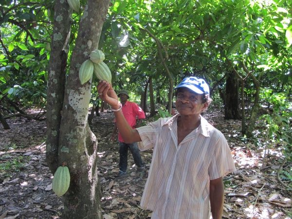 Issouf - a cacao farmer in Sambirano, Madagascar http://www.madacamp.com/Issouf_-_a_cacao_farmer_in_Sambirano,_Madagascar