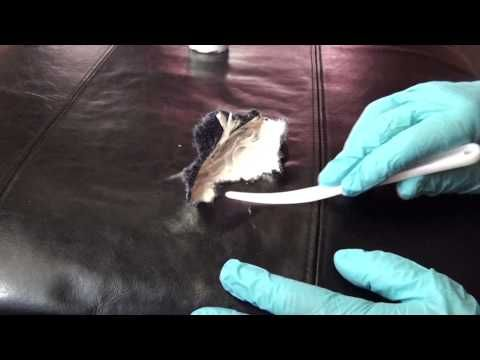 BYCAST LEATHER REPAIR - LARGE TEAR in Seat Cushion - YouTube