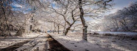Julefrokost kolding | Afhold jeres Julefrokost i Kolding - Houens Odde