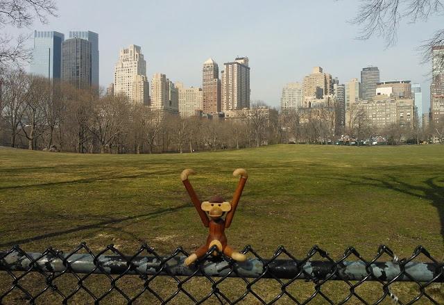 pientä mutta suurta: Central Park, NYC