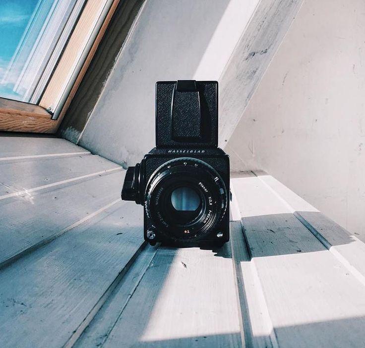 самом портрет на пленочный фотоаппарат жереха, фото