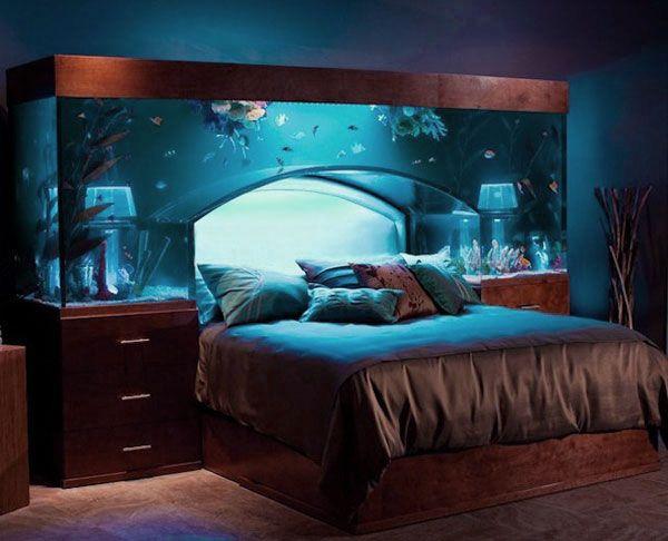Fish tank headboard need it Dream