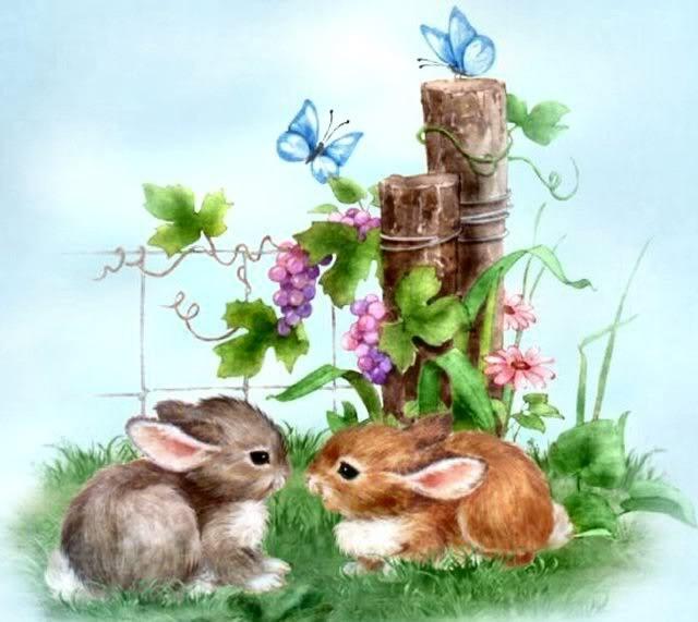 bunnies & butterflies