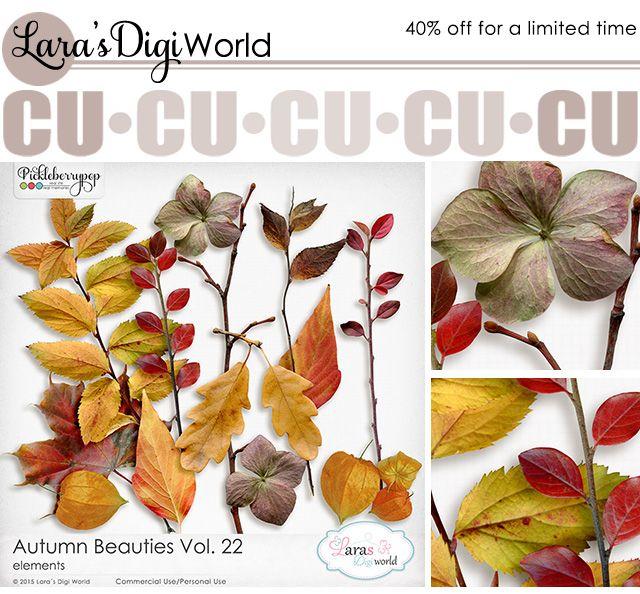 Lara´s Digi World - Digital Scrapbooking Designs: New Autumn Beauties