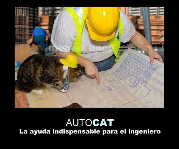 ¿Ya sabes usar el AutoCAT?