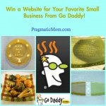 Help Your Favorite Small Business Win a Website Through Go Daddy :: PragmaticMom