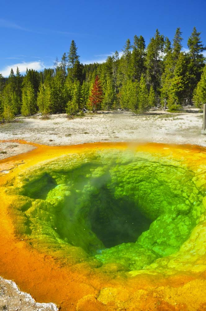 Yellowstone Park photo gallery | Eye candy photos | Pinterest | Yellowstone park, National parks and Places