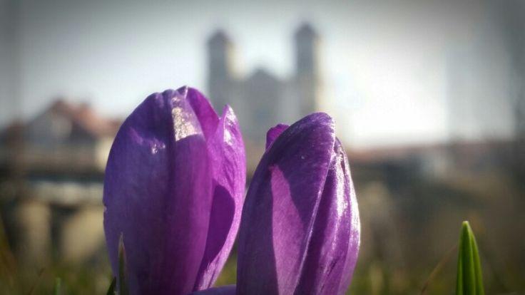Wiosna w magicznym Bardzie.