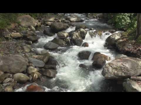 Boquete, Parque Internacional La Amistad y Parque Nacional Volcan Baru